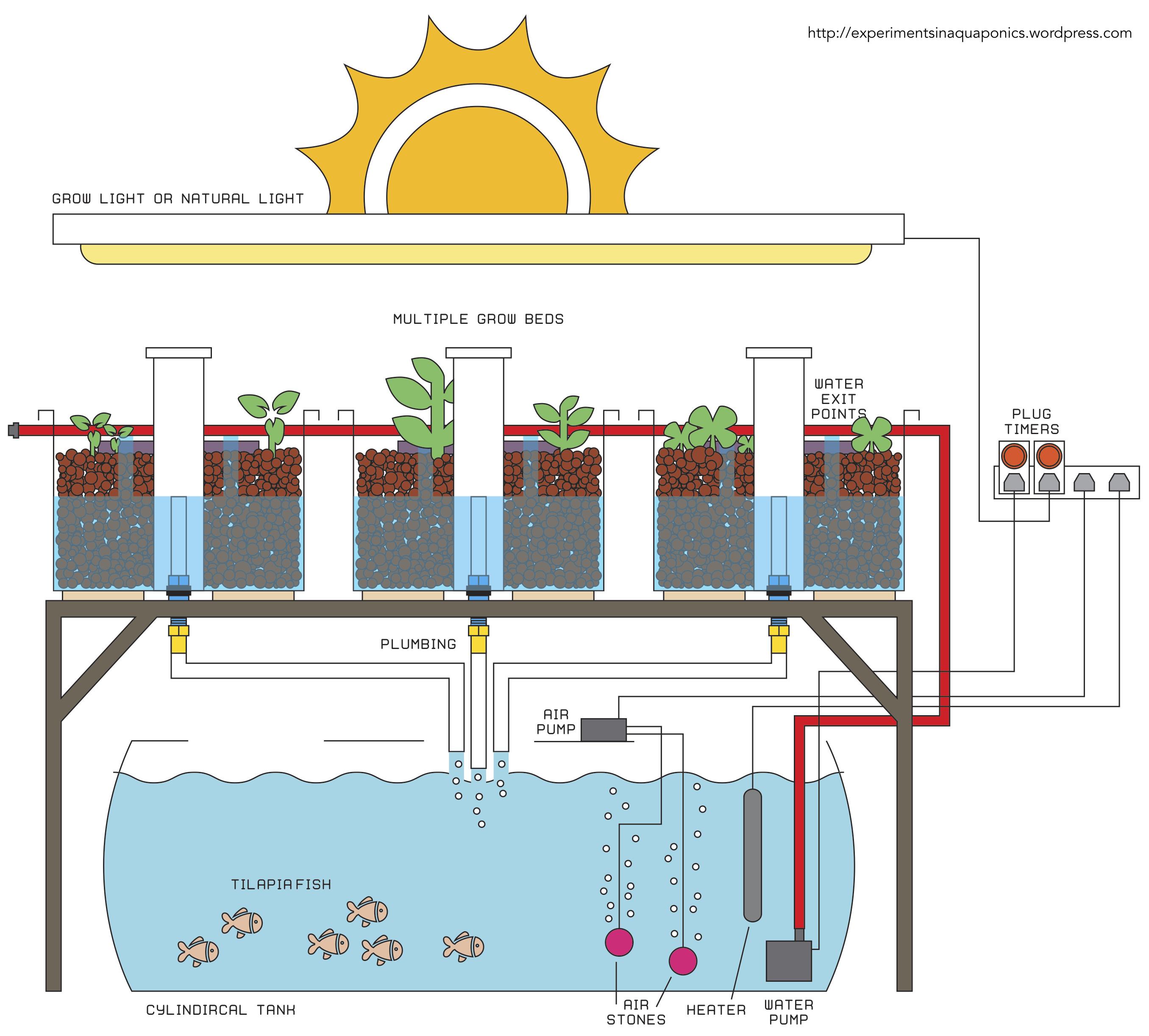 Aquaponics Grow Bed Diagram Ask Answer Wiring Diy Schematic Of Blog Rh 33 Fuerstliche Weine De